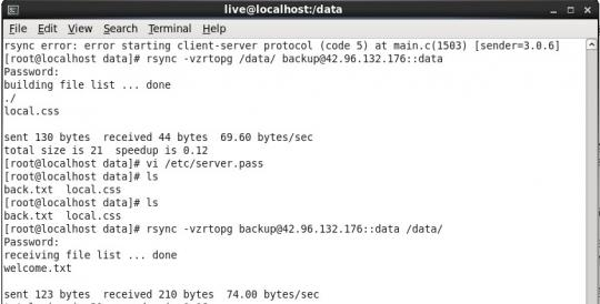 linux rsync设置之我所见